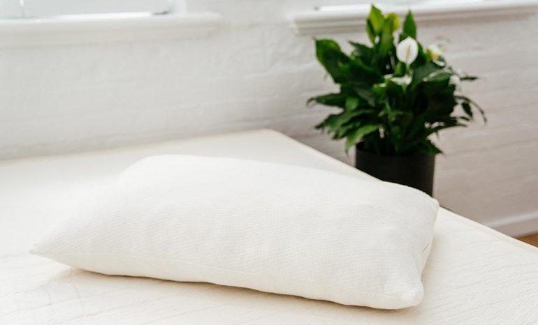 peacelily kapok pillow review